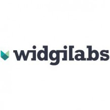 WidgiLabs - WordPress Experts